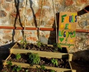Fruits et légumes à partager